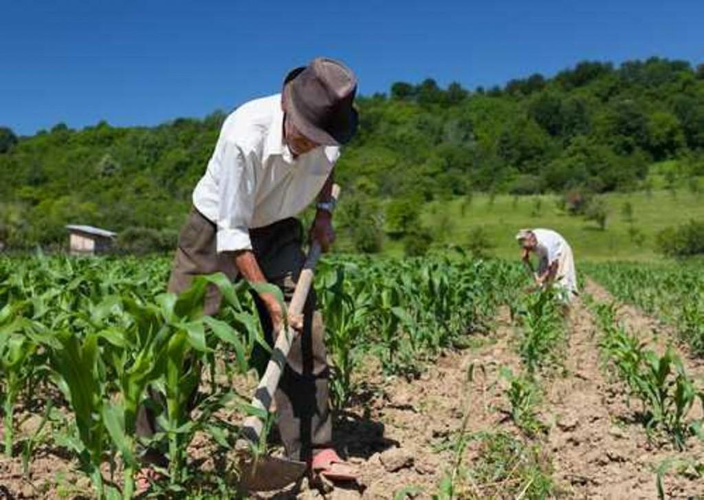 Garantia Safra: lista de agricultores contemplados com o benefício relativo a 2019/2020 está disponível na SEAME